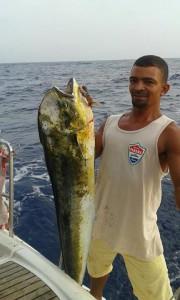 sailingkoala2